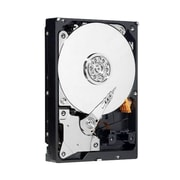 Western Digital® AV-GP 500GB 3 1/2 SATA Internal Hard Drive