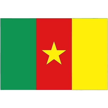 International Flag, Cameroon, 4