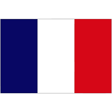 International Flag, France, 4