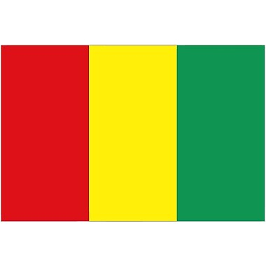 International Flag, Guinea, 36