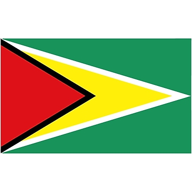 International Flag, Guyana, 36