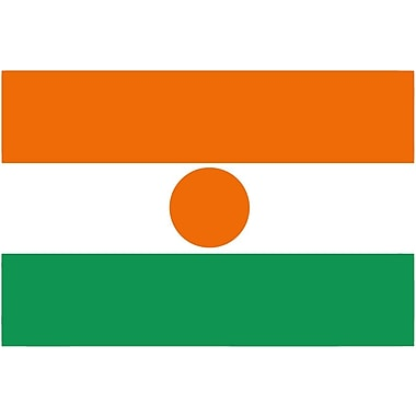 International Flag, Niger, 4