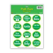 "Beistle 9"" x 12"" St Patrick Pub Fun Sticker, 7/Pack Sheet"