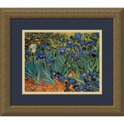 "Amanti Art Vincent Van Gogh ""Irises In The Garden"" Framed Print Art, 14.12"" x 16.12"""