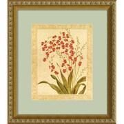 """Amanti Art Gloria Eriksen """"Red Begonias"""" Framed Print Art, 16"""" x 14"""""""