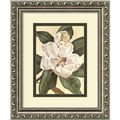 Amanti Art Waltraud Fuchs Von Schwarzbek in.Afternoon Magnoliain. Framed Print Art, 11.88in. x 9.88in.