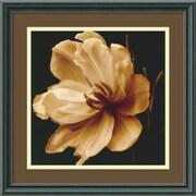 """Amanti Art Charles Britt """"Timeless Grace III"""" Framed Print Art, 15.88"""" x 15.88"""""""
