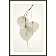 """Amanti Art Albert Koetsier """"Bo Tree"""" Framed Print Art, 21 3/4"""" x 14 3/4"""""""
