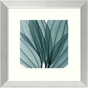 "Amanti Art Steven N. Meyers ""Leaf Bouquet"" Framed Print Art, 14.12"" x 14.12"""