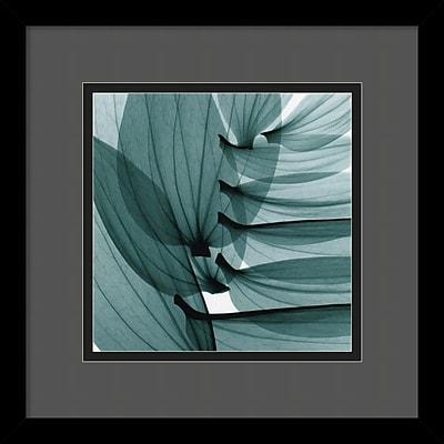 """""Amanti Art Steven N. Meyers """"""""Lily Leaves"""""""" Framed Print Art, 13 1/4"""""""" x 13 1/4"""""""""""""" 966898"