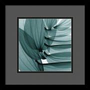 "Amanti Art Steven N. Meyers ""Lily Leaves"" Framed Print Art, 13 1/4"" x 13 1/4"""