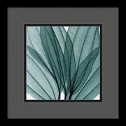 "Amanti Art Steven N. Meyers ""Leaf Bouquet"" Framed Print Art, 13 1/4"" x 13 1/4"""