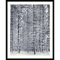 Amanti Art Ansel Adams in.Pine Forest in the Snow, Yosemite National Parkin. Framed Print Art, 31in. x 25in.
