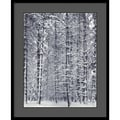 Amanti Art Ansel Adams in.Pine Forest in the Snow, Yosemite National Parkin. Framed Print Art, 33in. x 27in.