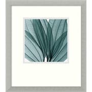 "Amanti Art Steven N. Meyers ""Leaf Bouquet"" Framed Print Art, 16 3/4"" x 14 3/4"""