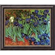 Amanti Art Vincent Van Gogh in.Irises In The Gardenin. Framed Art, 20in. x 24in.