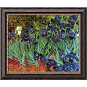 "Amanti Art Vincent Van Gogh ""Irises In The Garden"" Framed Art, 20"" x 24"""