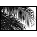 Amanti Art Jamie Kingham in.Palms 3in. Framed Print Art, 24.62in. x 36.75in.