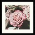 Amanti Art Elizabeth Hellman in.Vintage Rosein. Framed Print Art, 17in. x 16.88in.