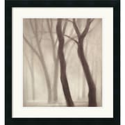 "Amanti Art Gretchen Hess ""Forest III"" Framed Print Art, 21.62"" x 20"""