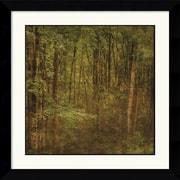 Amanti Art John W. Golden Fog in Mountain Trees Framed Print Art, 26.62 x 26.62