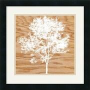 "Amanti Art Erin Clark ""Snowy Tree"" Framed Art, 18"" x 18"""