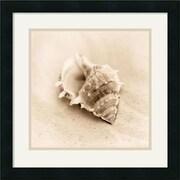 "Amanti Art Alan Blaustein ""Il Oceano No. 3"" Framed Print Art, 17.88"" x 17.88"""