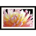 Amanti Art Amalia Veralli in.Dahliain. Framed Print Art, 30 1/2in. x 42 1/2in.