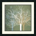 Amanti Art Erin Clark in.Quiet Forestin. Framed Print Art, 22in. x 22in.