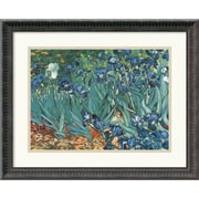 "Amanti Art Vincent Van Gogh ""Irises In The Garden"" Framed Print Art, 17 1/4"" x 21 1/4"""