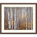 Amanti Art Charles Cramer in.Aspen in Fogin. Framed Print Art, 32 1/4in. x 38 1/4in.