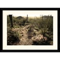Amanti Art Andy Magee in.Sonoran Desertin. Framed Print Art, 28.62in. x 38.62in.