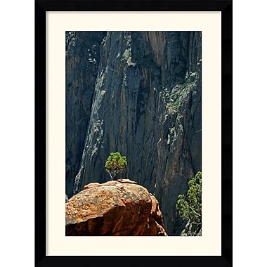Amanti Art Andy Magee in.Black Canyon Pinonin. Framed Print Art, 38.62in. x 28.62in.