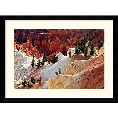 Amanti Art Andy Magee in.Cedar Breaks National Monumentin. Framed Print Art, 28.62in. x 38.62in.