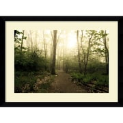 "Amanti Art Andy Magee ""Appalachian Trail"" Framed Print Art, 28.62"" x 38.62"""