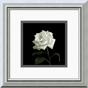 "Amanti Art Walter Gritsik ""Flower Series VIII"" Framed Print Art, 12"" x 12"""