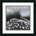 Amanti Art Chip Forelli in.Sand Daisiesin. Framed Print Art, 18in. x 18in.