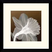 "Amanti Art ""Ruffled Elegance"" Framed Print Art, 13.12"" x 13.12"""