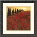 Amanti Art Steve Thoms in.Poppiesin. Framed Print Art, 18 1/4in. x 18 1/4in.