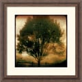 Amanti Art Linda Plaisted in.Old Goldin. Framed Print Art, 18 1/4in. x 18 1/4in.
