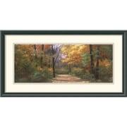 "Amanti Art Diane Romanello ""Autumn Road Panel"" Framed Print Art, 13 1/2"" x 25 1/2"""