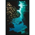 Amanti Art  in.Scuba Divingin. Framed Animal Art, 37.38in. x 25.38in.