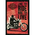 Amanti Art in.Harley Davidson - Live to Ridein. Framed Art, 37.38in. x 25.38in.