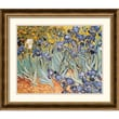 Amanti Art Vincent Van Gogh in.Irises In The Gardenin. Framed Print Art, 23 3/4in. x 27 3/4in.