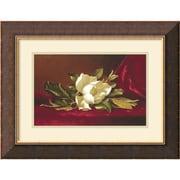 "Amanti Art Martin Johnson Heade ""The Magnolia Flower"" Framed Print Art, 17"" x 22"""