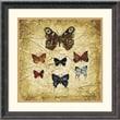 """Amanti Art Claudette Beauvais """"Papillons II"""" Framed Art, 20 1/4"""" x 20 1/4"""""""