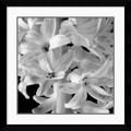 Amanti Art Brigitte Hoy in.Hyacinthin. Framed Print Art, 32.62in. x 32.62in.