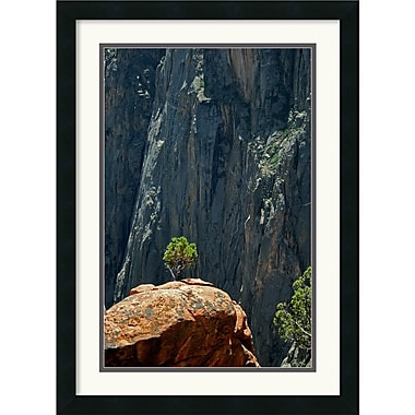 Amanti Art Andy Magee in.Black Canyon Pinonin. Framed Print Art, 26in. x 19in.