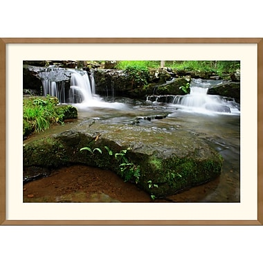 Amanti Art Andy Magee in.Collins Creek Cascadesin. Framed Print Art, 25in. x 35in.