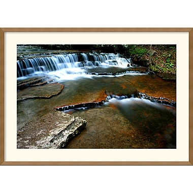 Amanti Art Andy Magee in.Collins Creekin. Framed Print Art, 25in. x 35in.